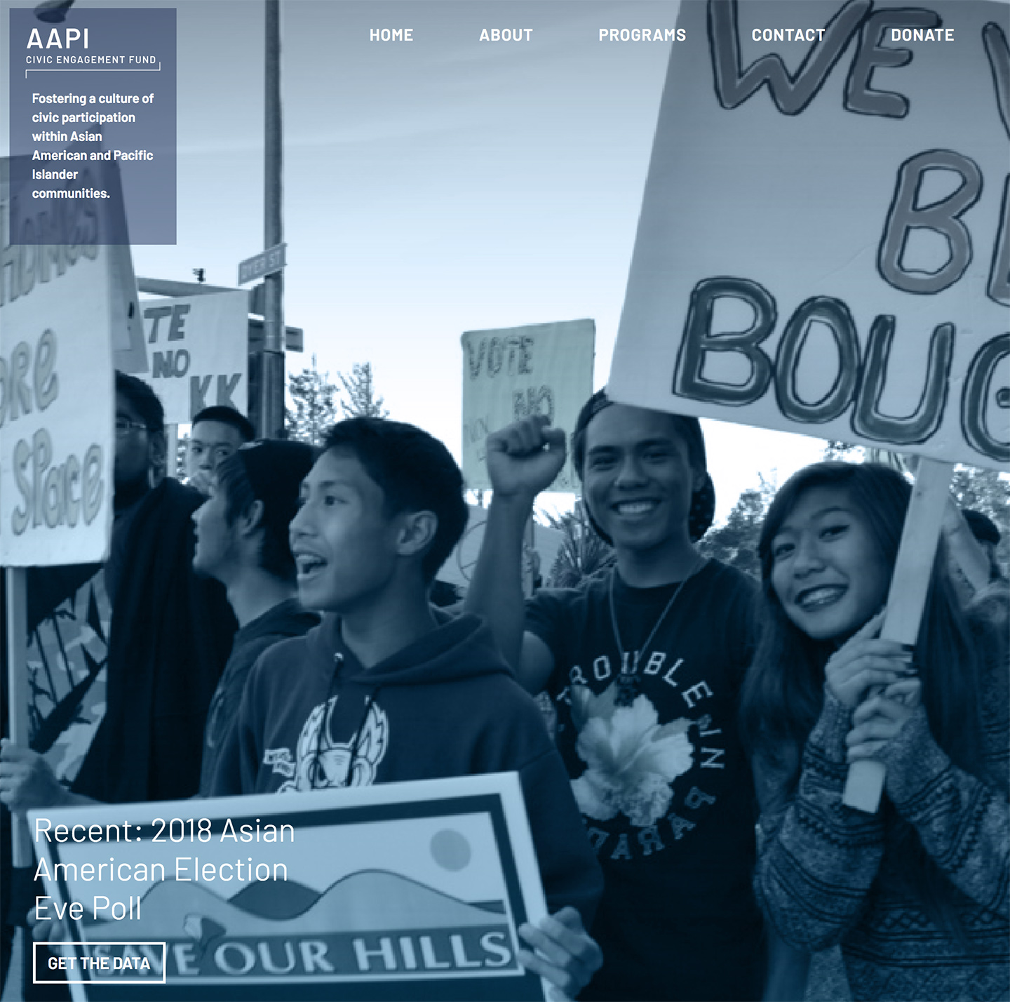 Site Overhaul for Asian American and Pacific Islander Civic Engagement Fund (AAPI)!