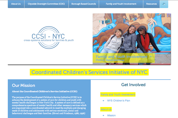 A New Brand & Web Presence for the Coordinated Children's Service Initiative