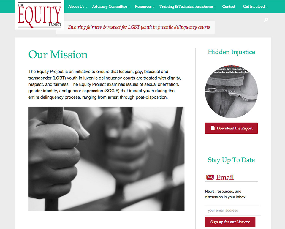 The Equity Project: Mission Statement