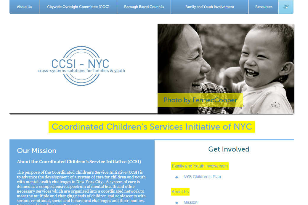 The Coordinated Children's Service Initiative (CCSI): CCSI Slideshow