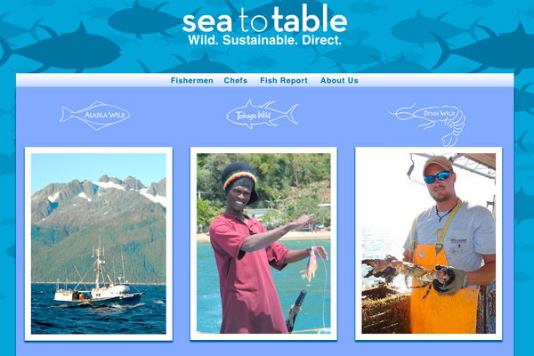 Sea to Table: Sea to Table Homepage