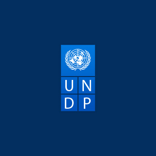 United Nations Development Programme (UNDP) by Social Ink