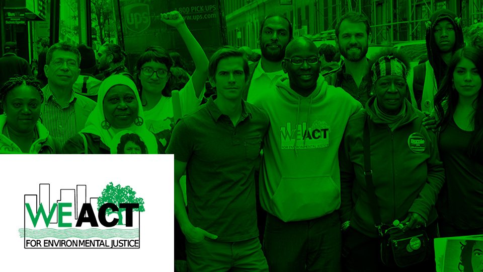 A New Web Platform for WE ACT