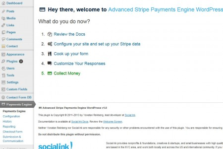Advanced Payment Engine WordPress - Welcome Screen